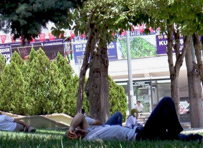 Havalar ısındı: Vatandaşlar soluğu ağaçların altında alıyor